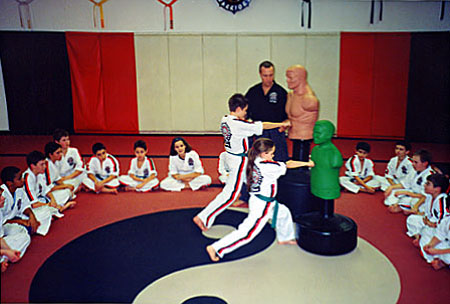 The Martial Arts Institute Birthday Parties