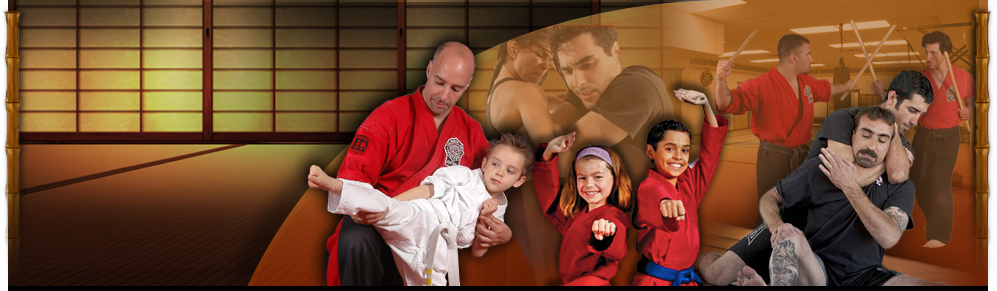 Martial Arts Institute header